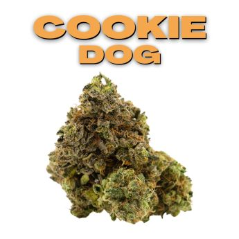 GT Cookie Dog 8th (THC 21.7%)