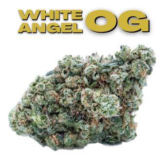 GT White Angel OG 8th (THC 32.22%)