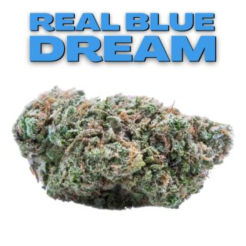 GT Real Blue Dream 8th (THC 26.83%)