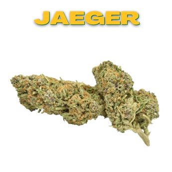 GT Jaeger 8th (THC 26.85%)