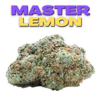 GT Master Lemon 8th (THC 16.87%)