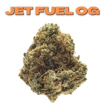 GT Jet Fuel OG 8th (THC 24.72%)