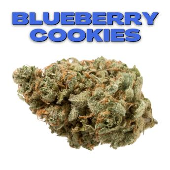 GT Blueberry Cookies 8th (THC 16.29%)