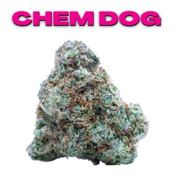 GT Chem Dog 8th (THC 28.28%)