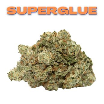 GT Superglue 8th (THC 29.20%)