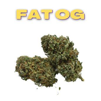 GT Fat OG 8th (THC 22.04%)